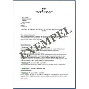 Personligt CV VVS